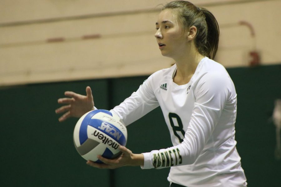 Sac State senior outside hitter Sarah Davis prepares to serve the ball against Northern Colorado Thursday, Oct. 17 at The Nest. Davis recorded 50 aces during her senior season.