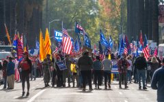 Trump supporters gather on Saturday, Nov. 14th, 2020 along 10th Street in front of the California State Capitol in response to Joe Biden's projected election victory. South Korean flags could be seen alongside 'Trump 2020' and American flags.