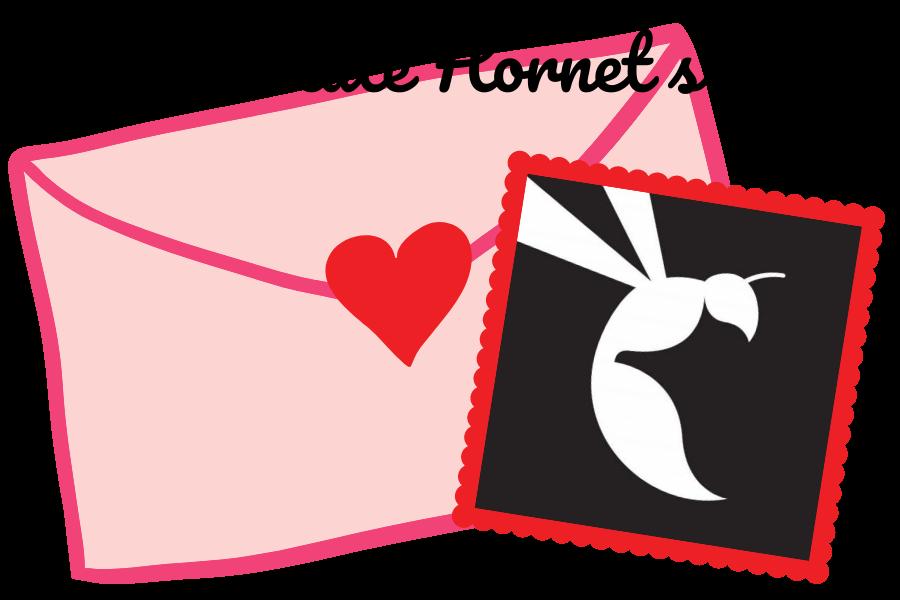 dear-state-hornet