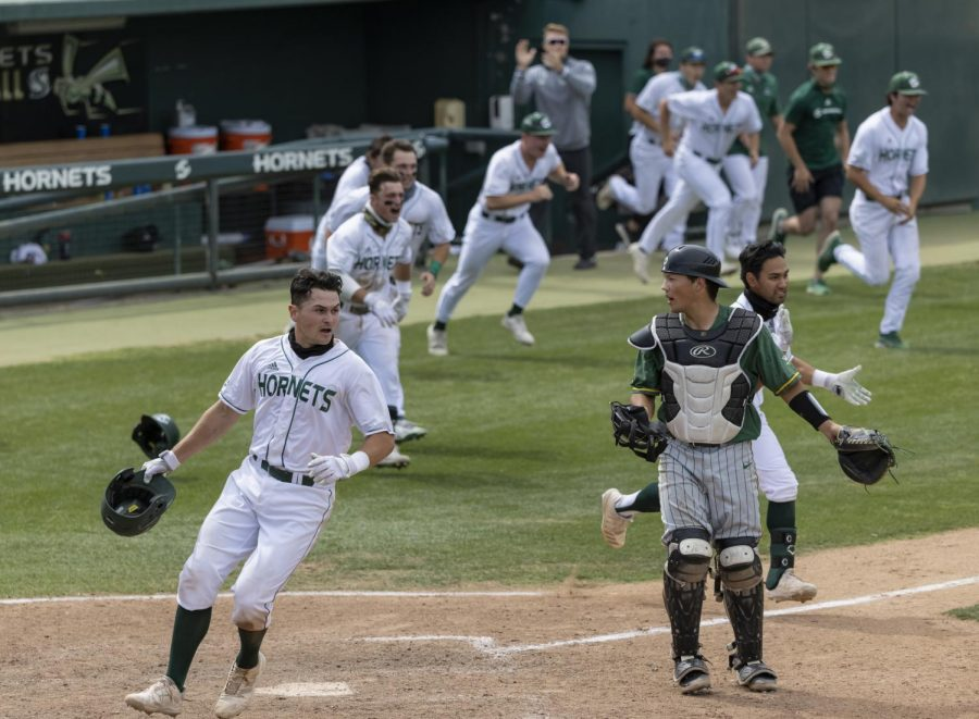 Sacramento State junior Dawsen Bacho crosses home plate as the team rushes the field after the walk-off win in the bottom of the seventh inning in game one against the University of San Francisco at John Smith Field at Sac State on Saturday, May 15, 2021. Moretto had three at-bats with one hit.