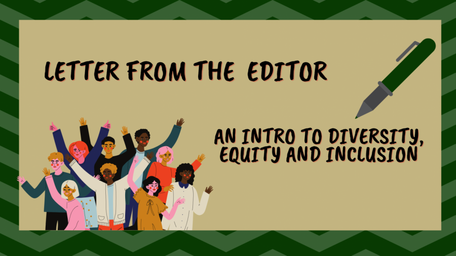 Diversity, Equity and Inclusion editor, Emma Hall, pens an open letter detailing the section's mission and goals for the fall semester. Hall also shares the results of our summer audit and The State Hornet's goal of having half of each story's section focused on underrepresented communities. Graphic created in Canva.